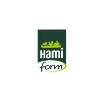 HAMI FORM